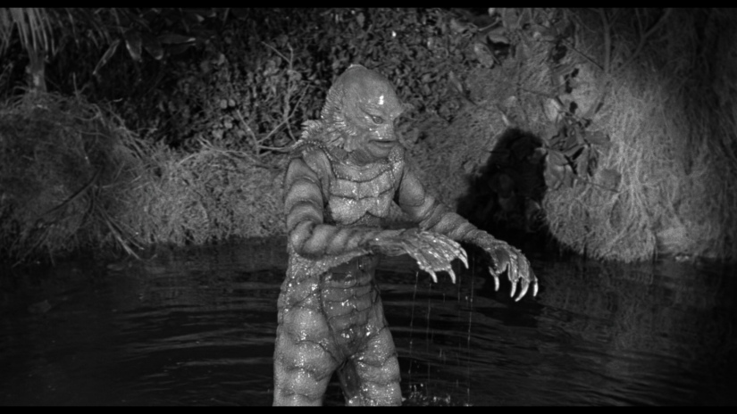 Photo of gill man